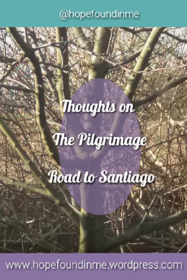 https://hopefoundinme.wordpress.com/2018/03/31/my-thoughts-on-pilgrimage-the-road-to-santiago/