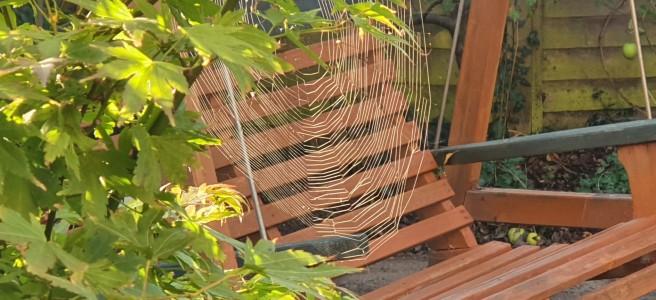 Garden swingseat