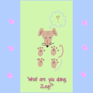 Sighthound