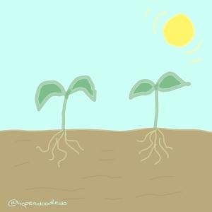 Seedlings doodle