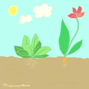 Flower bed doodle